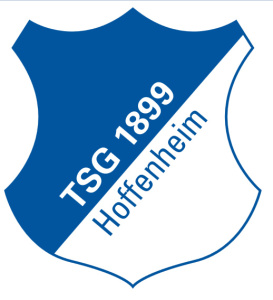 TSG 1899 Hoffenheim, Football, India, Unilazer ventures, Ronnie Screwala, Football, Grassroots, Academy, Bundesliga